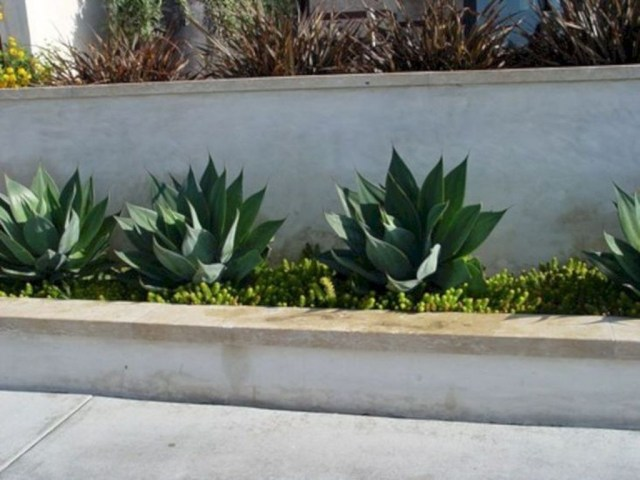 Rustic Wall Outdoor Concrete Ideas For Inspiration 02