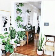 Smart Interior Design Ideas With Plants For Home 14