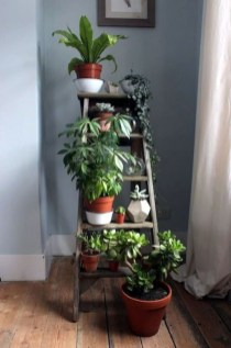 Smart Interior Design Ideas With Plants For Home 30