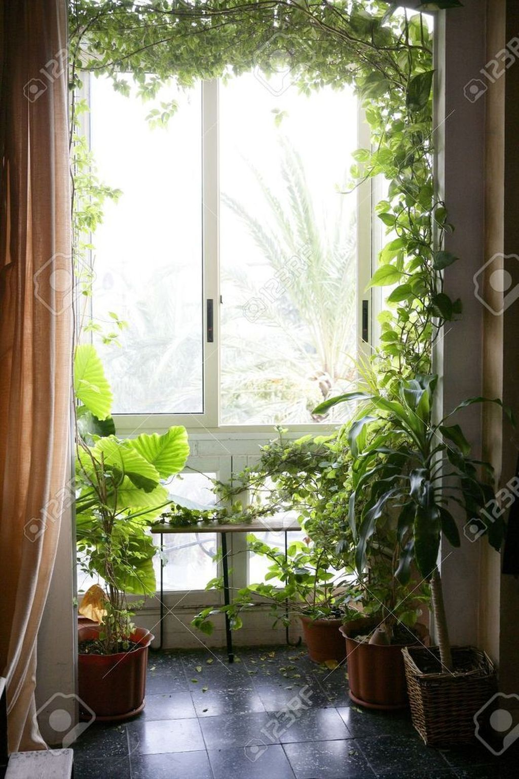 Smart Interior Design Ideas With Plants For Home 32