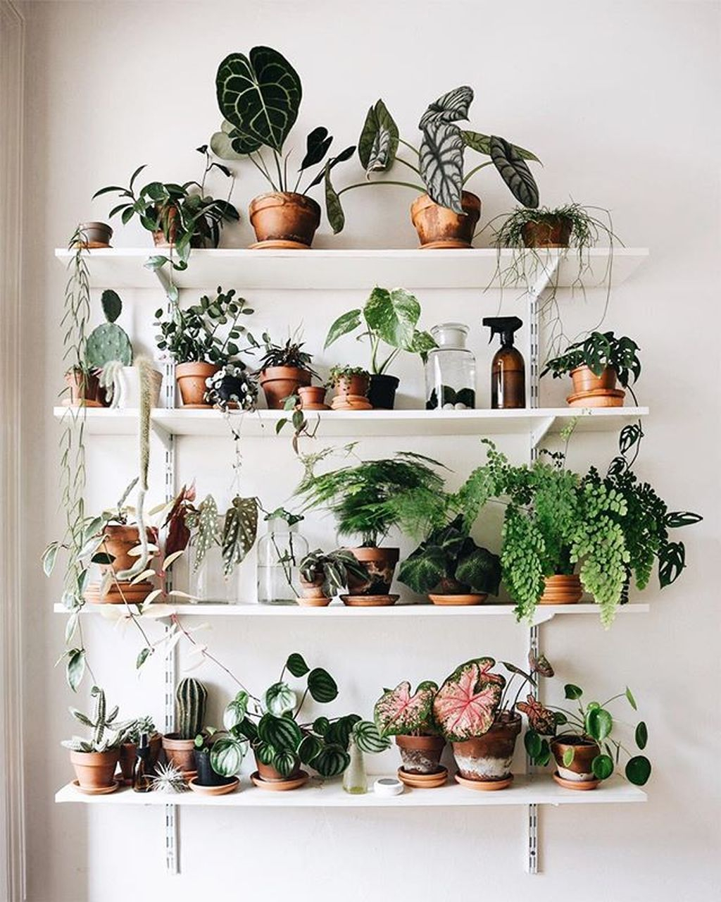 Smart Interior Design Ideas With Plants For Home 36