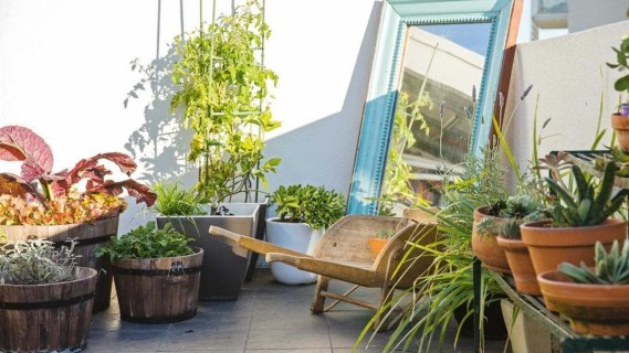 Best Jaw Dropping Urban Gardens Ideas To Copy Asap 32