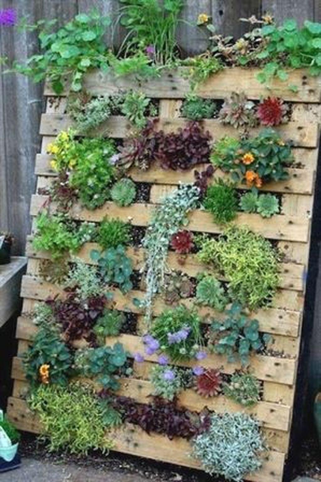 Brilliant Diy Projects Pallet Garden Design Ideas On A Budget 06