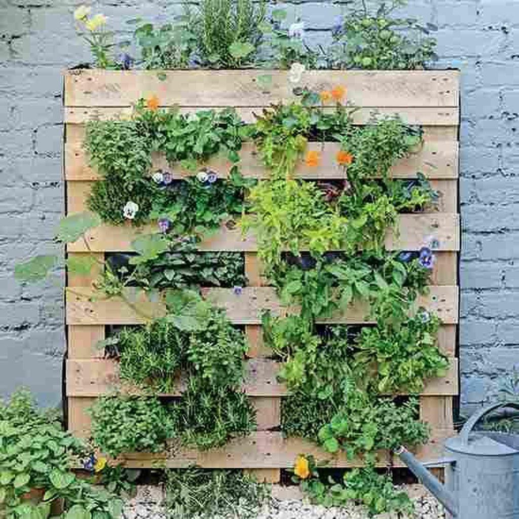 Brilliant Diy Projects Pallet Garden Design Ideas On A Budget 09