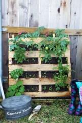 Brilliant Diy Projects Pallet Garden Design Ideas On A Budget 24