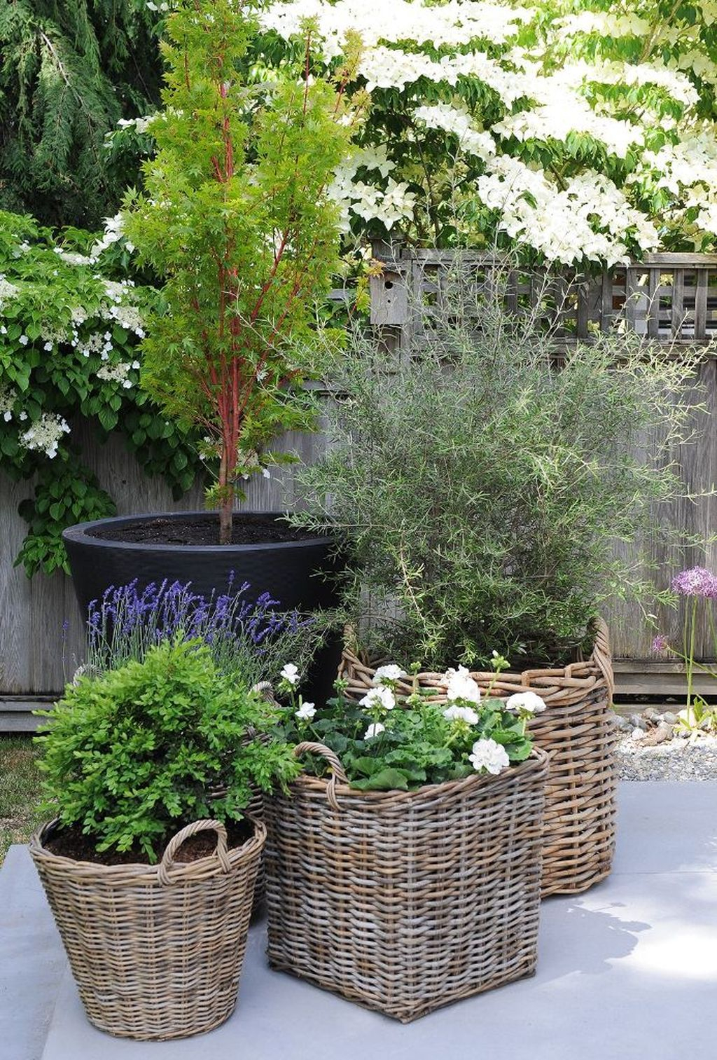 Captivating Diy Patio Gardens Ideas On A Budget To Try 01