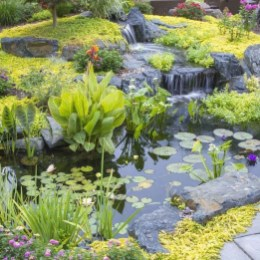 Creative Backyard Ponds Ideas With Waterfalls To Try 15