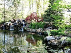 Creative Backyard Ponds Ideas With Waterfalls To Try 27