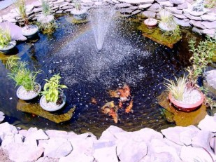 Creative Backyard Ponds Ideas With Waterfalls To Try 31
