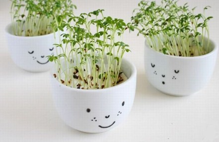 Inspiring Diy Teacup Mini Garden Ideas To Add Bliss To Your Home 33