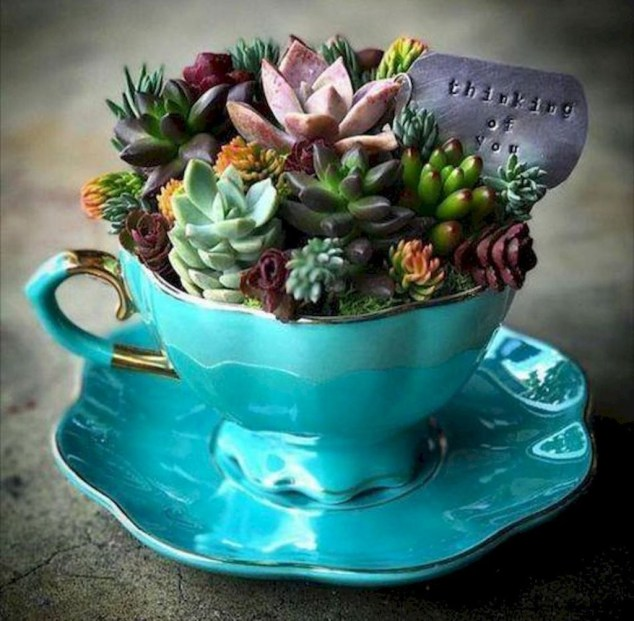 Inspiring Diy Teacup Mini Garden Ideas To Add Bliss To Your Home 38