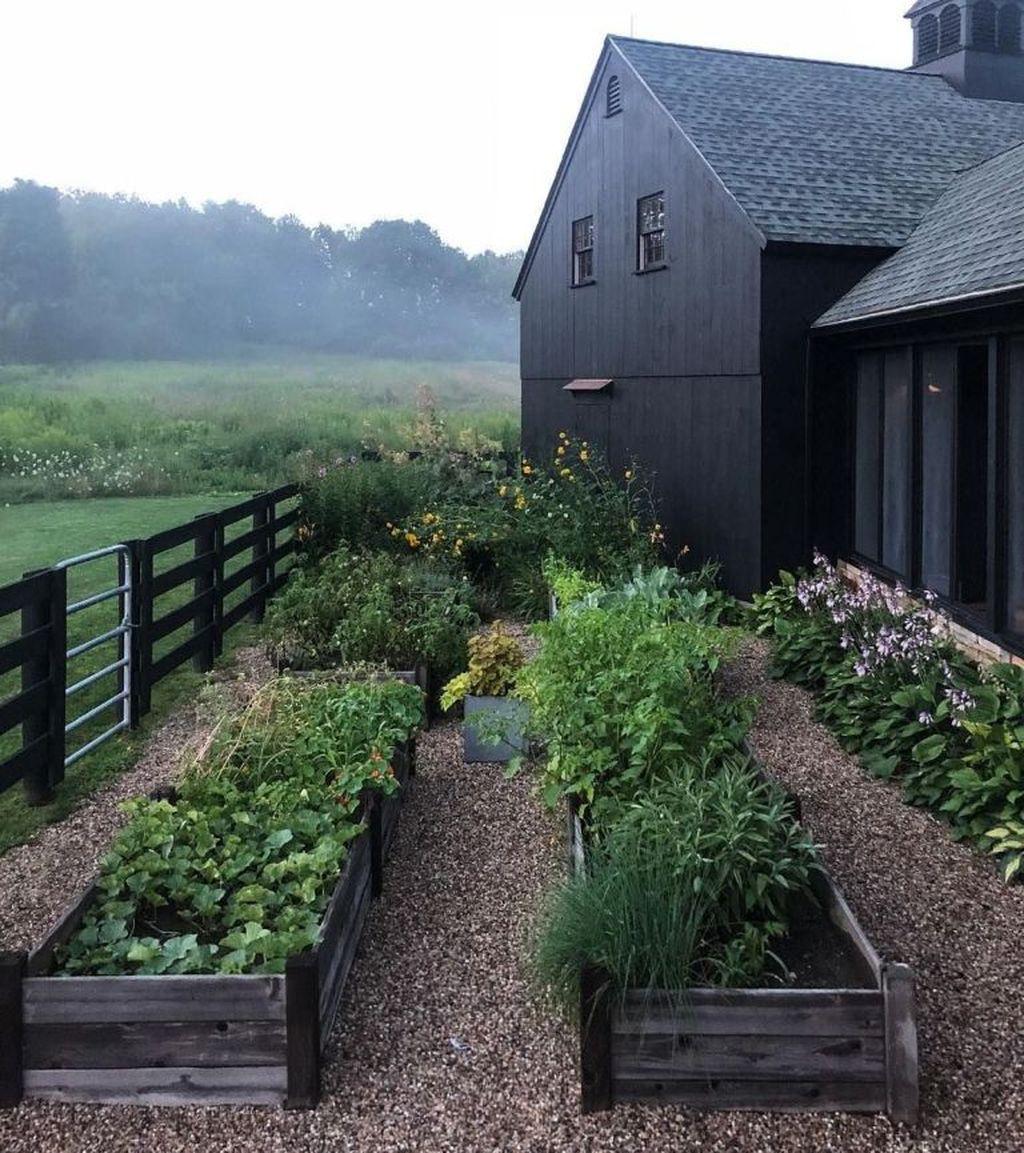 Lovely Vegetable Garden Decoration Ideas For You 01