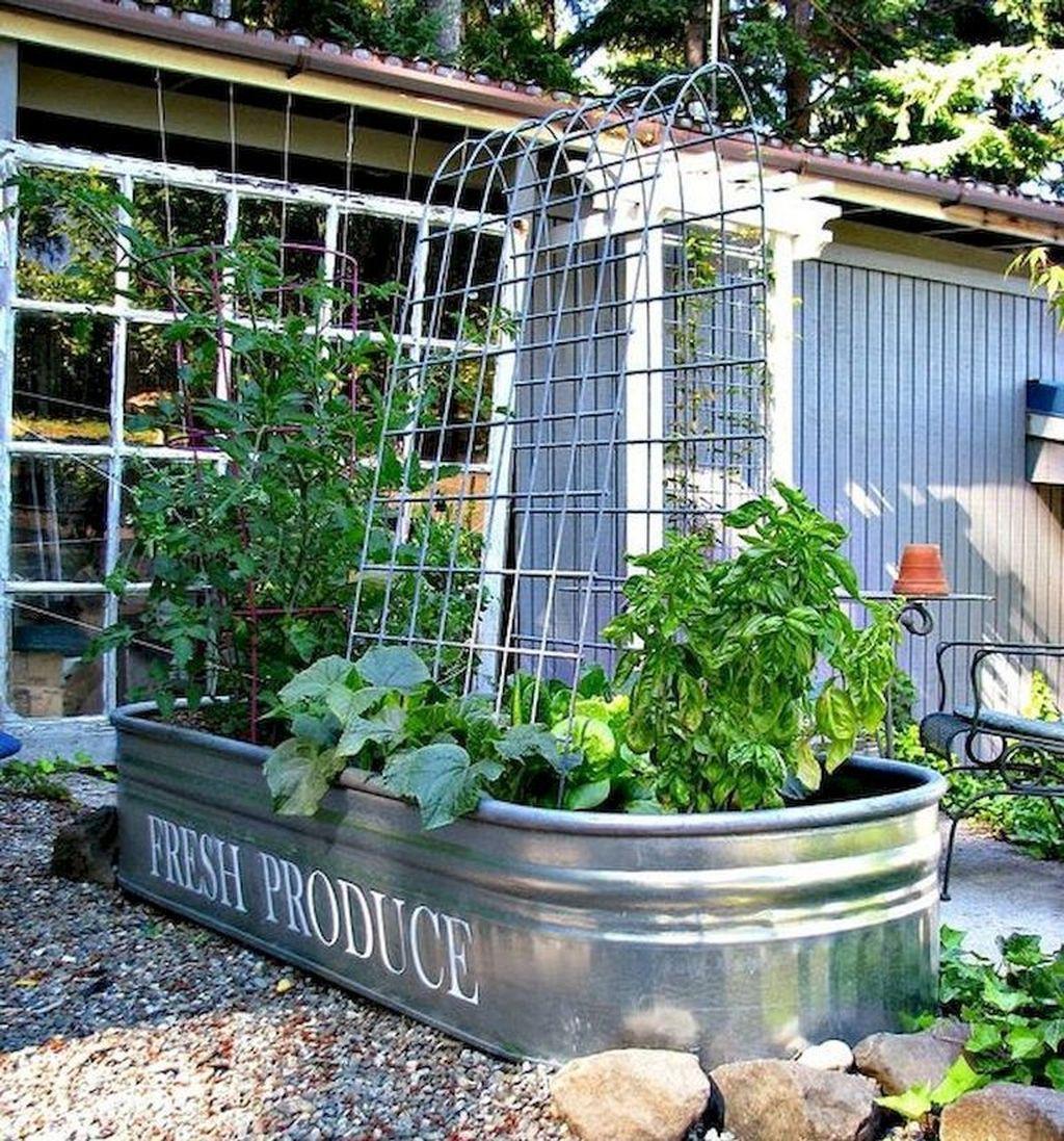 Lovely Vegetable Garden Decoration Ideas For You 15
