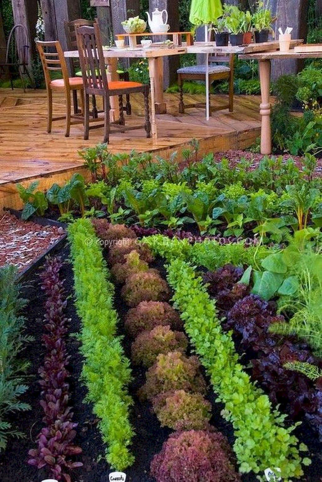 Lovely Vegetable Garden Decoration Ideas For You 25