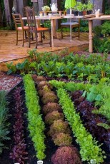 Lovely Vegetable Garden Decoration Ideas For You 25