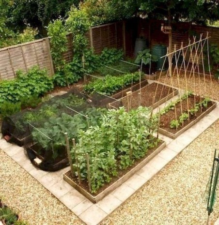 Lovely Vegetable Garden Decoration Ideas For You 28