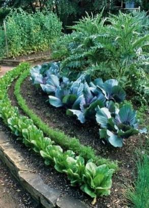 Lovely Vegetable Garden Decoration Ideas For You 36