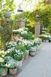 Beautiful Cottage Garden Ideas For Outdoor Space 05