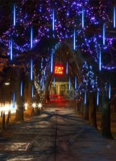 Astonishing Holiday Decorating Ideas With Lights To Try This Season 22