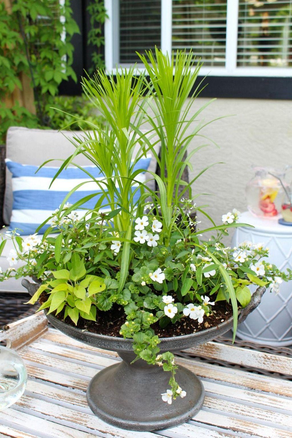 Chic Summer Planter Design Ideas For Summer Outdoor Pool 08