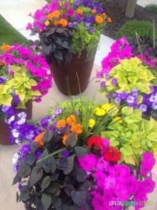 Chic Summer Planter Design Ideas For Summer Outdoor Pool 13