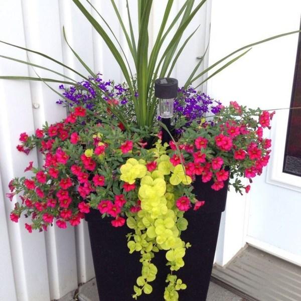 Impressive Summer Planter Design Ideas For Front Yard Decoration 18