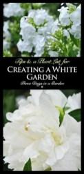 Elegant White Plants Garden Design Ideas For You 02