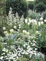 Elegant White Plants Garden Design Ideas For You 17