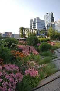 Marvelous Sky Garden Ideas With Enchanting Landscape To Try 21