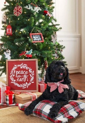 Casual Winter Decorating Ideas For Pet Lovers To Try Right Now 07