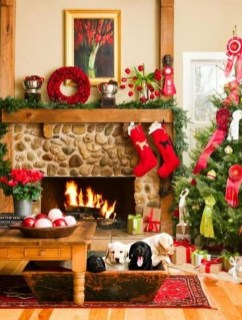 Casual Winter Decorating Ideas For Pet Lovers To Try Right Now 10