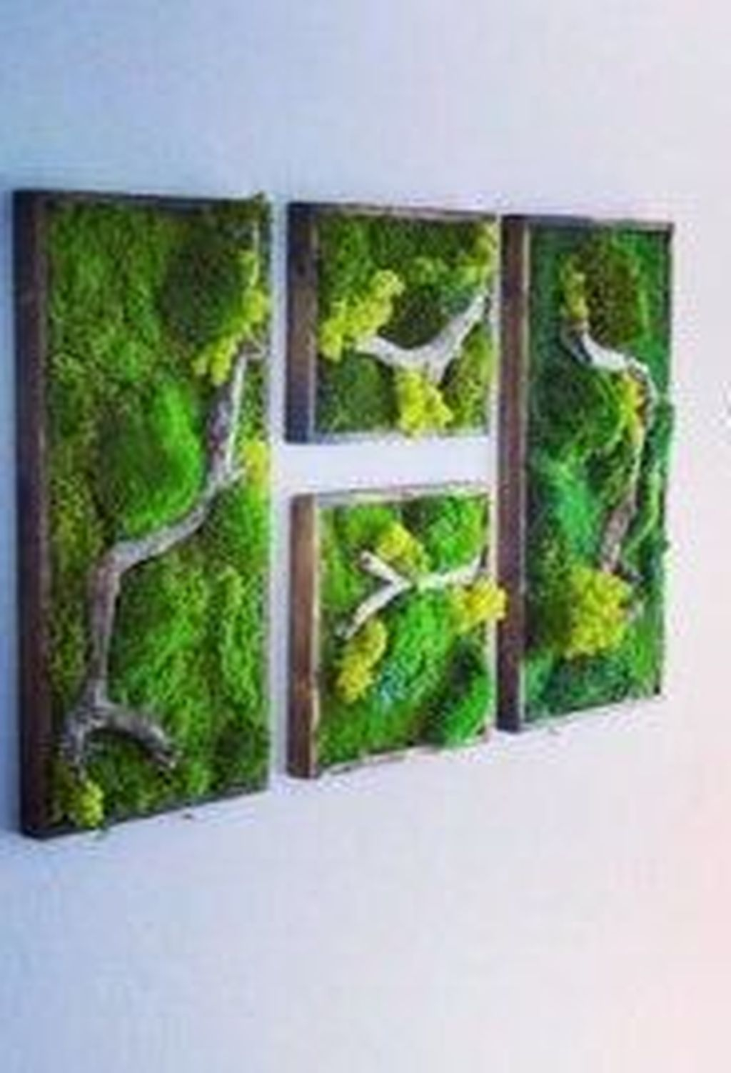 Delicate Natural Moss Wall Art Decorations Ideas To Try Right Now 16