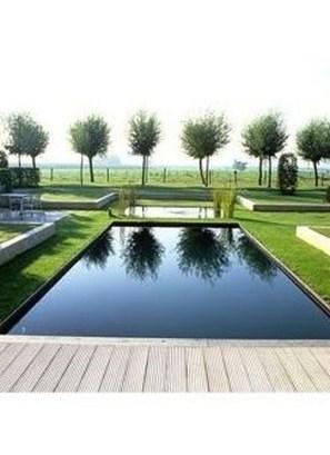 Elegant Black Swimming Pool Design Ideas That All Men Must Know 31