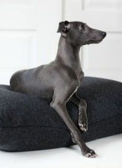 Trendy Dog Bed Design Ideas With Scandinavian Look To Have Right Now 01