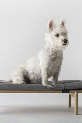 Trendy Dog Bed Design Ideas With Scandinavian Look To Have Right Now 15