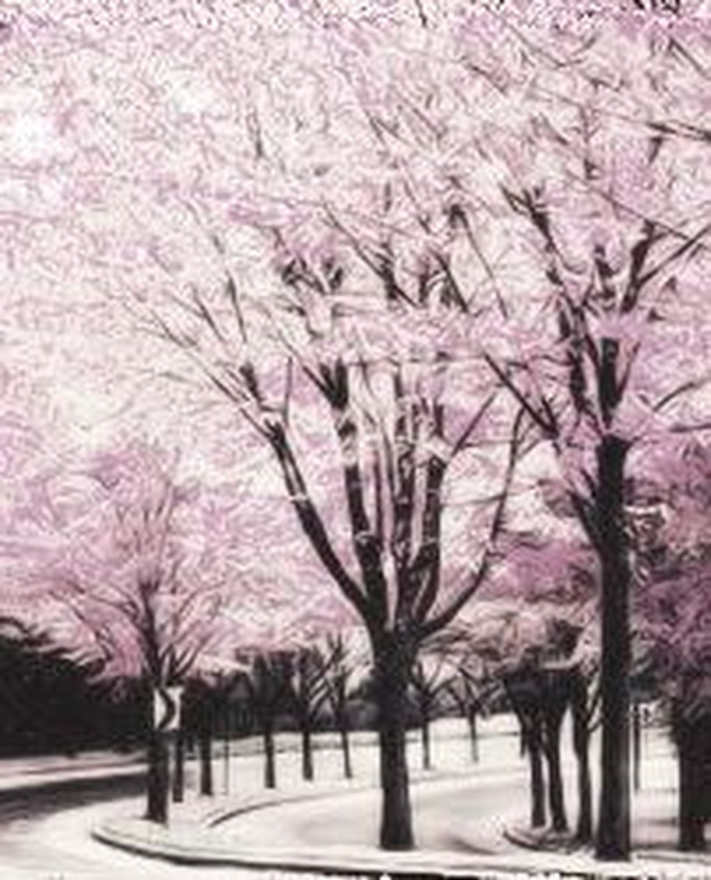 Sophisticated Pink Winter Tree Design Ideas That Looks So Cute 06