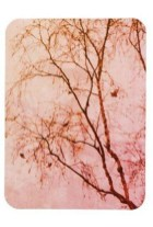 Sophisticated Pink Winter Tree Design Ideas That Looks So Cute 10