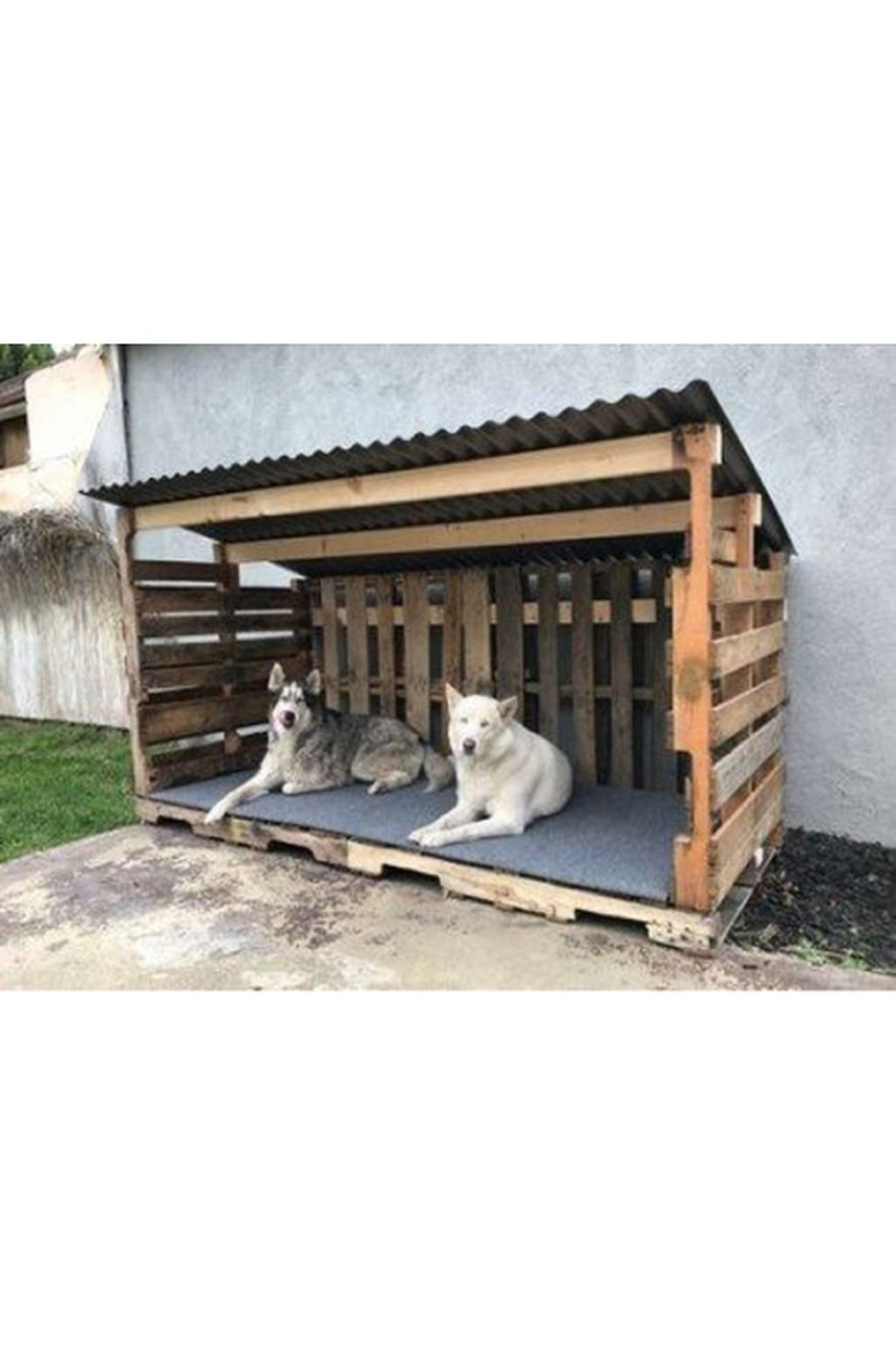 Interesting Outdoor Dog Houses Design Ideas For Pet Lovers 22