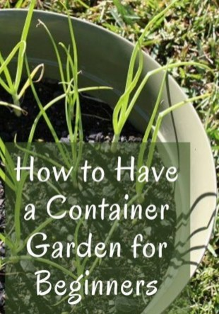 Luxury Container Garden Design Ideas For Your Landscaping Design 24