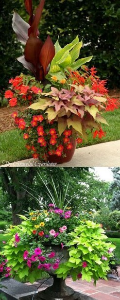 Luxury Container Garden Design Ideas For Your Landscaping Design 25