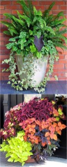 Luxury Container Garden Design Ideas For Your Landscaping Design 28