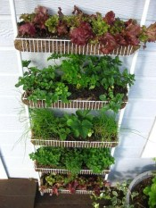 Luxury Container Garden Design Ideas For Your Landscaping Design 30