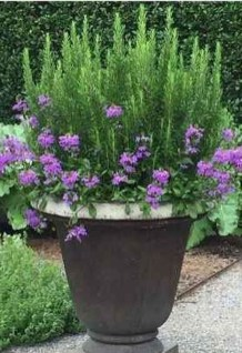 Luxury Container Garden Design Ideas For Your Landscaping Design 32