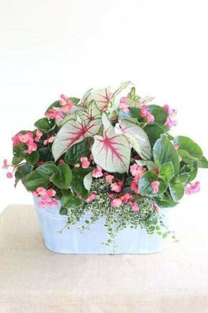 Luxury Container Garden Design Ideas For Your Landscaping Design 37