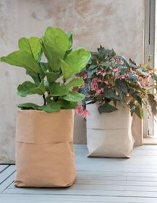Splendid Recycled Planter Design Ideas That You Need To Try 12