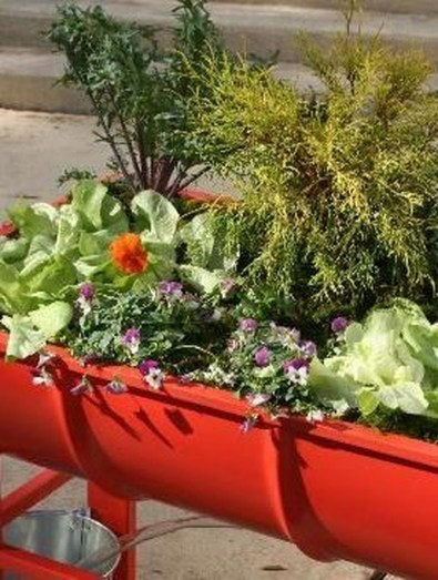 Splendid Recycled Planter Design Ideas That You Need To Try 39