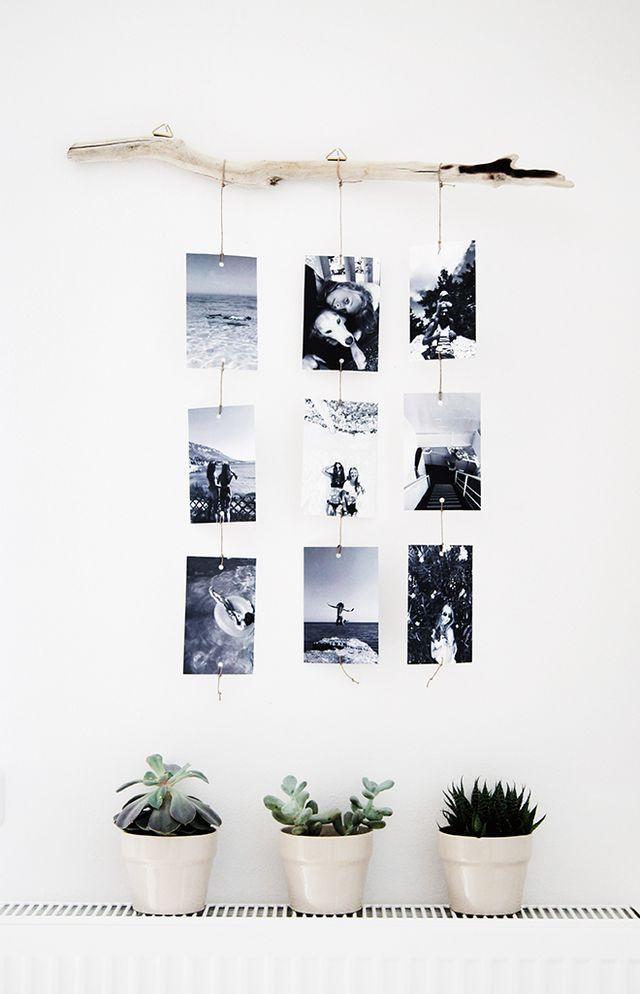 DIY hanging branch photo display wall decoration