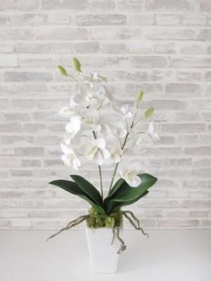 白いデンファレの花器アレンジ / 北九州市小倉クレイクラフト教室 Clay Craft* Decorocca