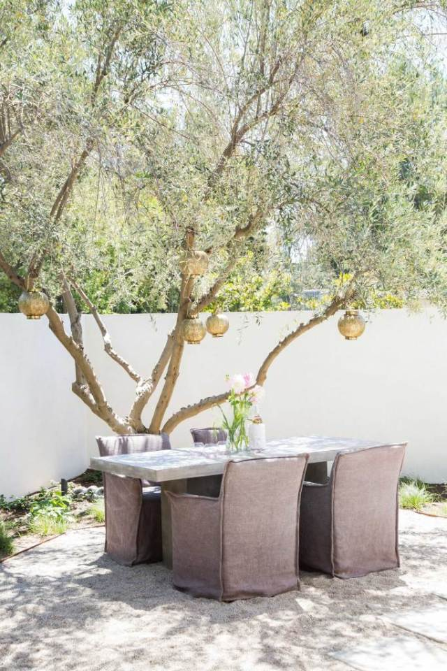 Backyard with olive tree, table and chairs