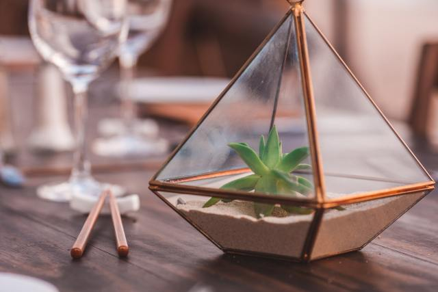 Succulent Terrarium on the table beside the glasses and chopsticks